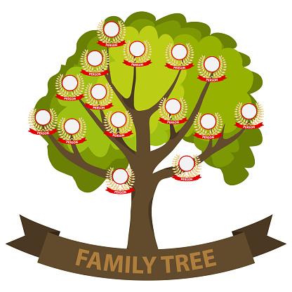 Genealogy tree, family tree with family members.