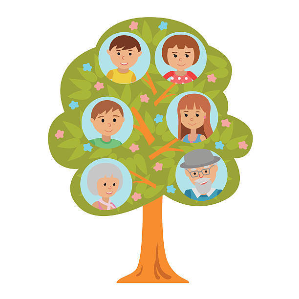 generation family tree flat style isolated white background. - old man pic cartoons stock illustrations, clip art, cartoons, & icons
