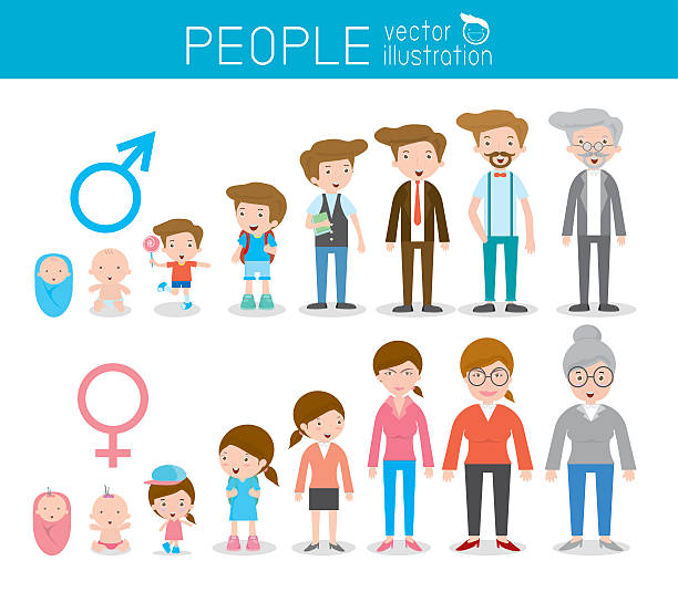 generation of people from infants to juniors. all age categories - old man standing background stock illustrations, clip art, cartoons, & icons