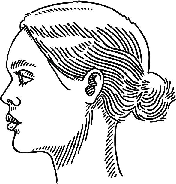 Generic Woman Portrait Side View Drawing Hand-drawn vector drawing of a Generic Woman Portrait, Side View. Black-and-White sketch on a transparent background (.eps-file). Included files are EPS (v10) and Hi-Res JPG. women stock illustrations
