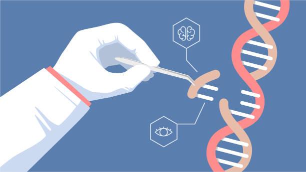 CRISPR CAS9 - Genetic engineering CRISPR CAS9 - Genetic engineering. Gene editing tool illustration chromosome stock illustrations