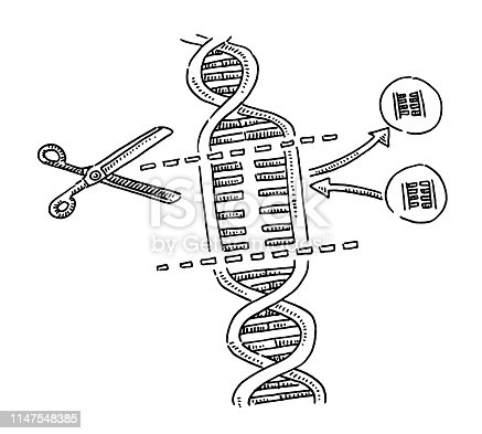 Hand-drawn vector drawing of a CRISPR Genetic Science image for DNA Substitution. Black-and-White sketch on a transparent background (.eps-file). Included files are EPS (v10) and Hi-Res JPG.