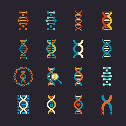 DNA stock illustrations