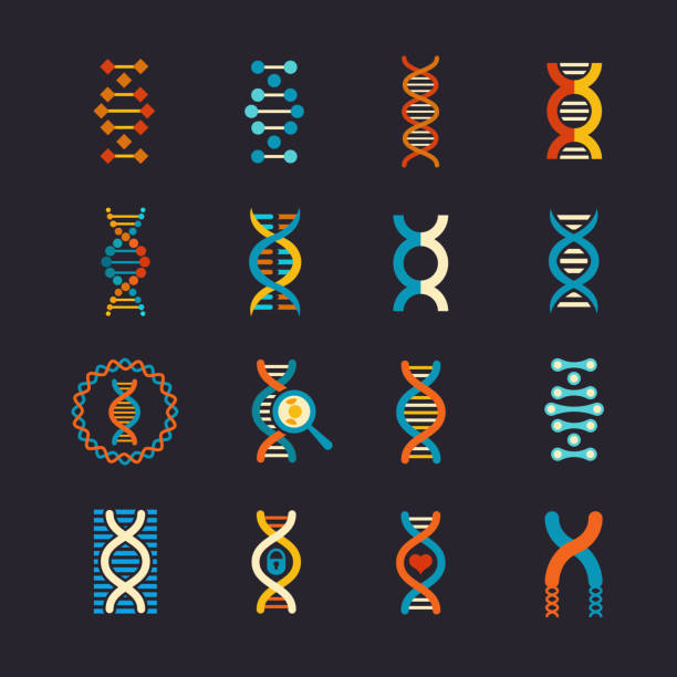 dna genetic vector flat icons set - dna stock illustrations, clip art, cartoons, & icons