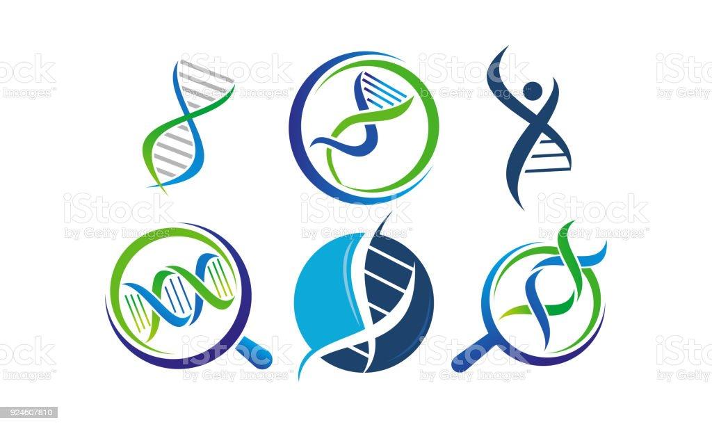 Conjunto de modelo de genética de DNA - ilustração de arte em vetor