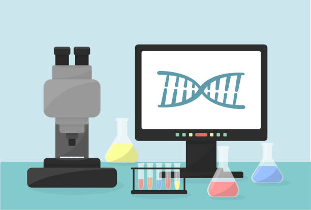 Genome research concept. Flat vector illustration of laboratory equipment. Microscope, computer, test tubes as illustration. Healthcare illustration. dna test stock illustrations
