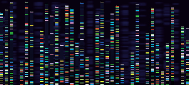 Genomic analysis visualization. Dna genomes sequencing, deoxyribonucleic acid genetic map and genome sequence analyze vector concept