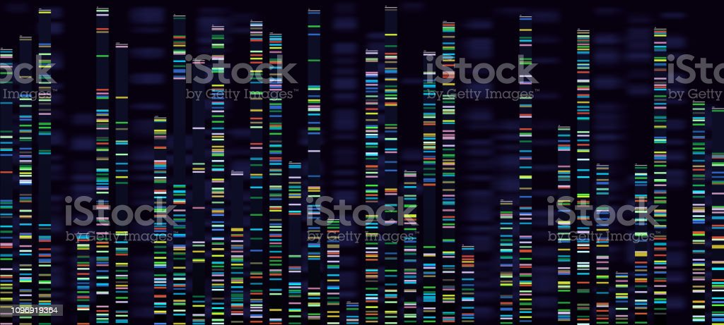 Genomic analysis visualization. Dna genomes sequencing, deoxyribonucleic acid genetic map and genome sequence analyze vector concept vector art illustration