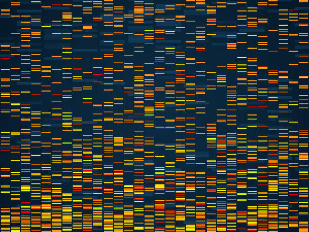 Genomic visualization. Dna genomes sequencing data analysis. Digital internet technology, bioinformatics testing chromosome vector concept Genomic visualization. Dna genomes sequencing data analysis. Digital internet technology, bioinformatics testing chromosome vector visual texture sequence concept genomics stock illustrations