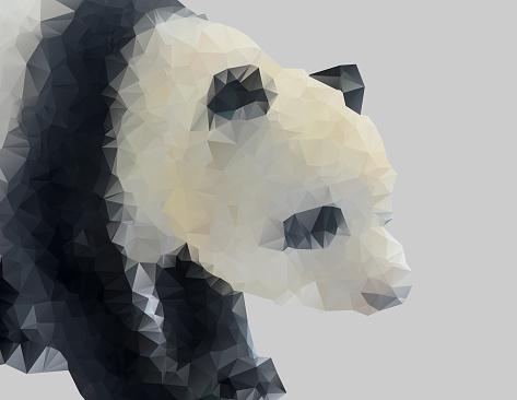 Geometric Animal Panda outline