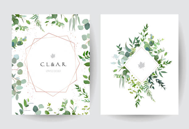 Geometric botanical vector design frames on white background Geometric botanical vector design frames on white background. Silver dollar eucalyptus, greenery, plants. Trendy wedding green rustic cards. Pink gold line art and glitter.Isolated and editable. lush foliage stock illustrations