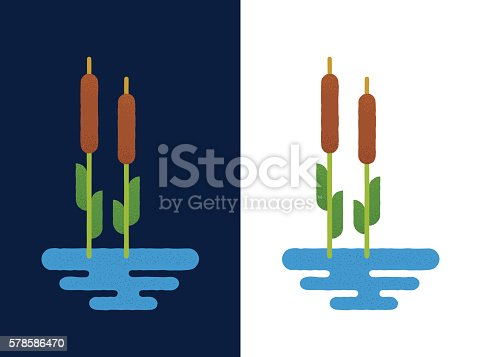 Cattails in lake on white and blue background. Vector illustration in flat geometric cartoon style. Reed logo or icon.