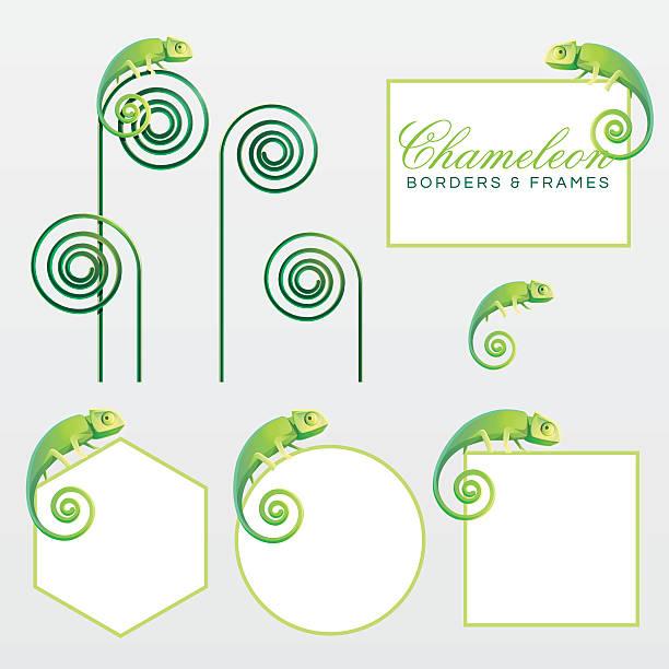 geometric green chameleon lizard page decoration borders and frames - chameleon stock illustrations