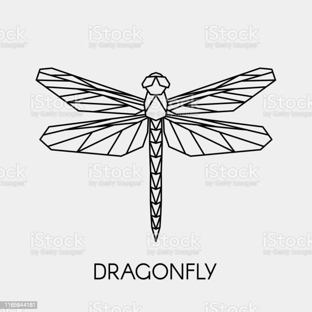 Geometric linear dragonfly polygonal animal vector illustration vector id1165644181?b=1&k=6&m=1165644181&s=612x612&h=a0uw8reb gf1lyte4x 15wwpjdpu e3putq33xnpwrk=
