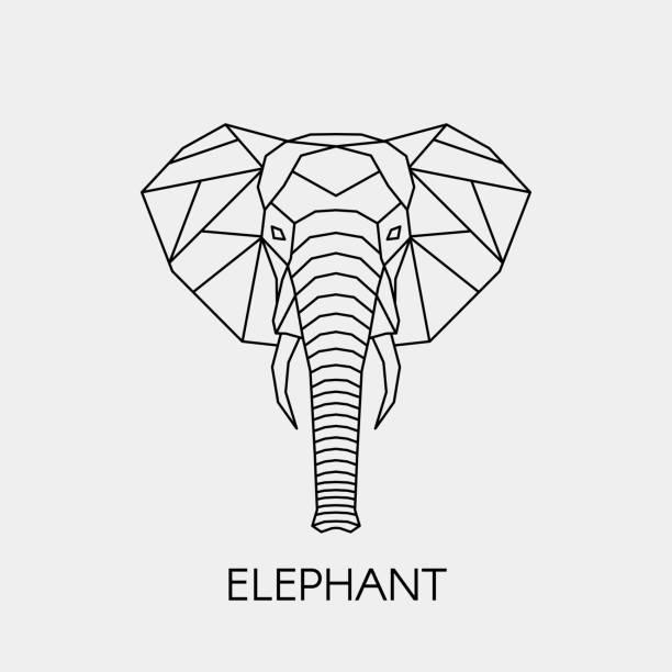 Geometric linear elephant. Polygonal head animal. Vector illustration. Black contour drawing animal for creativity. elephant stock illustrations