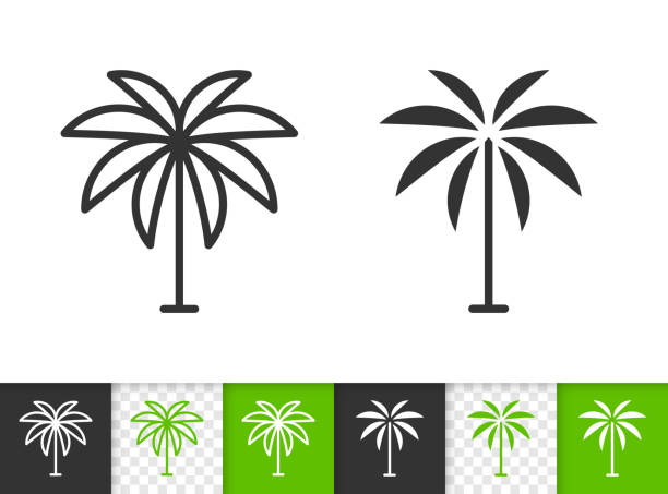 Geometric Palm Tree simple black line vector icon Geometric Tree black linear and silhouette icons. Thin line sign of date palm. Coconut outline pictogram isolated on transparent background. Vector Icon shape. Tropical Tree simple symbol close-up beach clipart stock illustrations