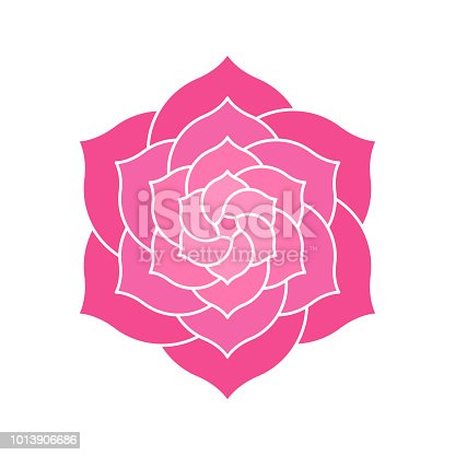 Elegant geometric lotus or camelia illustration. Abstract pink flower shape with many petals.