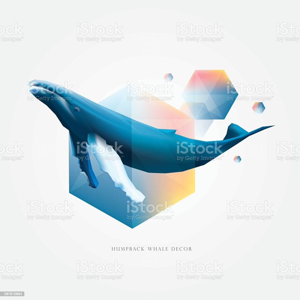 geometric polygonal design elements with Humpback whale - ilustración de arte vectorial