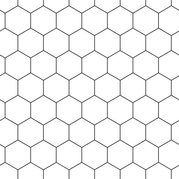 Geometric seamless pattern with hexagons, black and white tile. Honeycomb background. Outline design. Vector Geometric seamless pattern with hexagons, black and white tile. Honeycomb background. Outline design. Vector illustration honeycomb animal creation stock illustrations