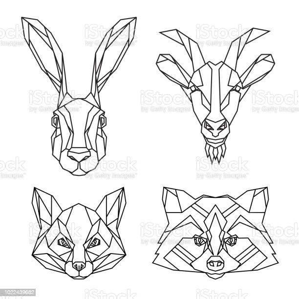 Geometric set of hare goat fox and raccoon vector animal heads drawn vector id1022439682?b=1&k=6&m=1022439682&s=612x612&h=fhsgqmhaun bxq tvqlkdyk10osxssxbpgztthg6wsu=