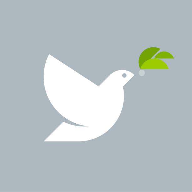 geometrischer stil logo markierung vorlage der weißen taube mit olivenzweig auf grauem hintergrund - wildtaube stock-grafiken, -clipart, -cartoons und -symbole