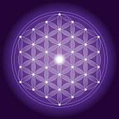 Vector Illustration of a beautiful Geometrical Flower of Life pattern with Symmetrical Structure