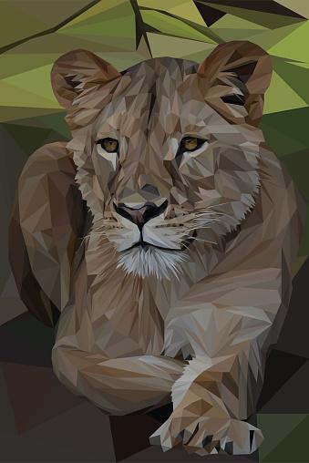Geometrical Lioness