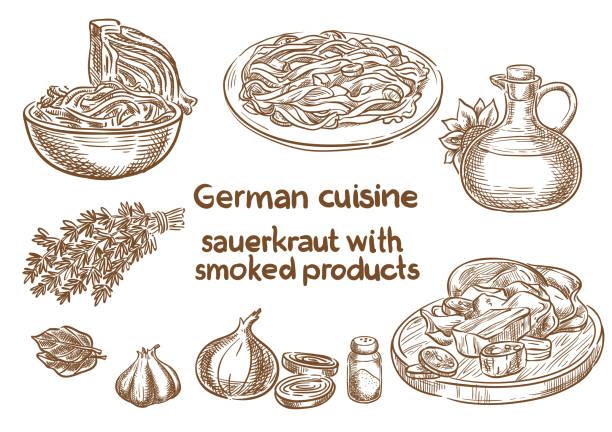 deutsche küche. sauerkraut mit geräuchertem produkte zutaten. traditionelle oktoberfest-essen. skizze, zeichnung. - sauerkraut stock-grafiken, -clipart, -cartoons und -symbole