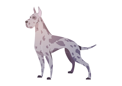 German dog in the style of cartoon.