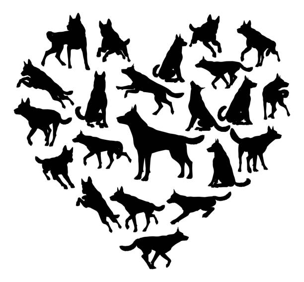 German Shepard Alsatian Dog Heart Concept A German Shepard Alsatian or similar dog heart silhouette concept for someone who loves their pet malamute stock illustrations