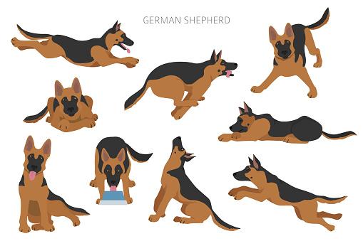 German shepherd dogs in different poses. Shepherd characters pattern