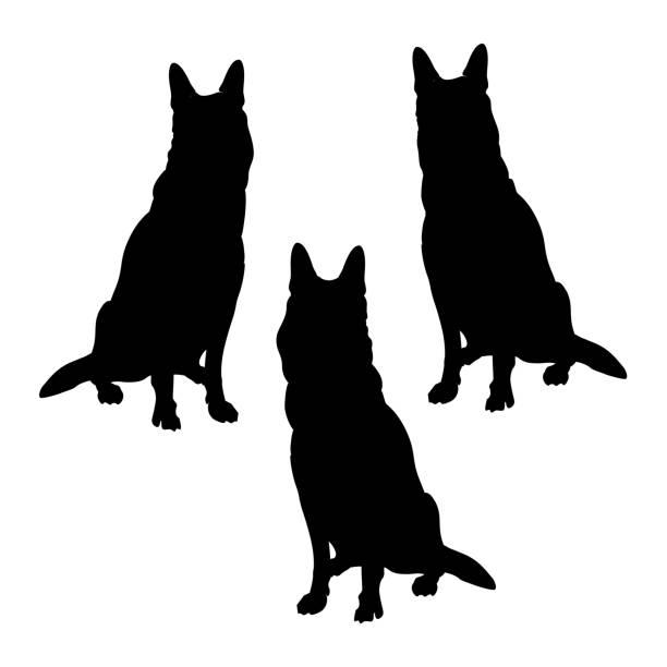 deutscher schäferhund hunde silhouetten - arbeitshunde stock-grafiken, -clipart, -cartoons und -symbole
