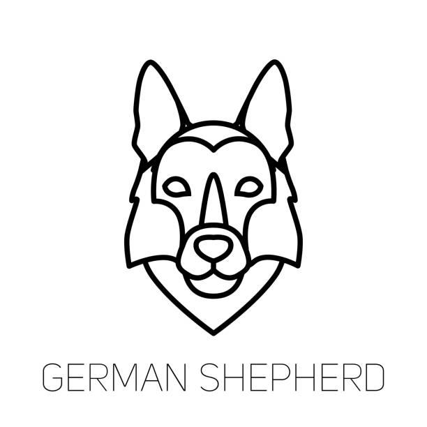 German Shepherd linear face icon. Isolated outline dog head vector vector art illustration