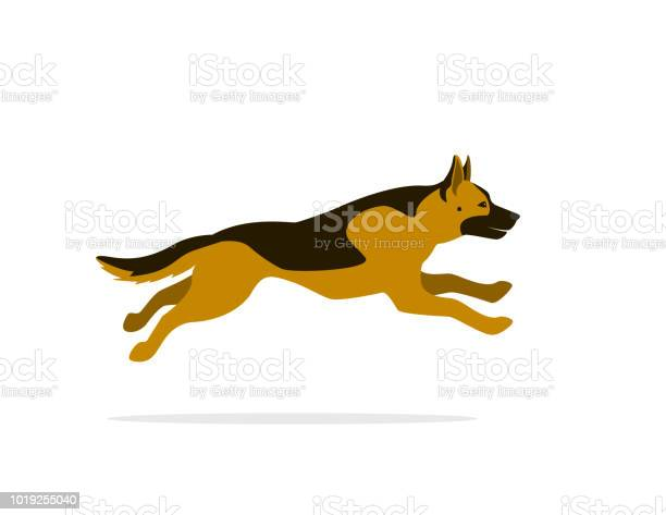 German shepherd running cartoon vector graphic isolated vector id1019255040?b=1&k=6&m=1019255040&s=612x612&h=2q0vrclvsztsvznhnw3fchskgggj7xh obpywmy9wi0=