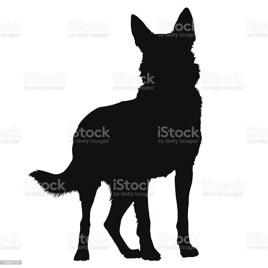 german shepherd clip art, vector images & illustrations - istock