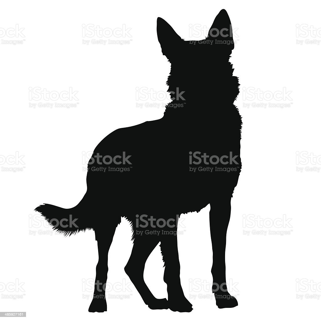 royalty free german shepherd clip art  vector images free french poodle clipart Standard Poodle Silhouette