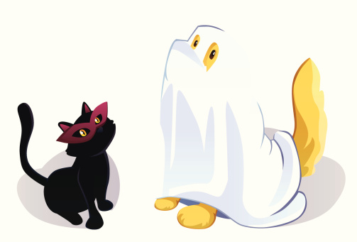 Ghost Dog and Witch Cat