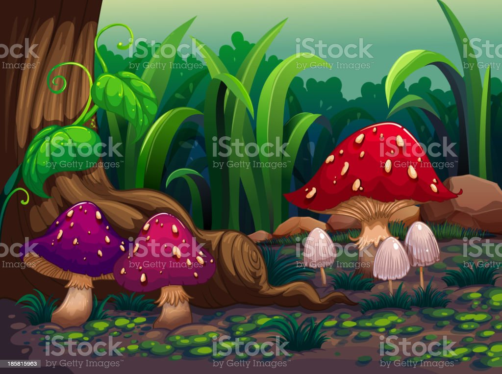 Giant mushrooms in the forest royalty-free stock vector art