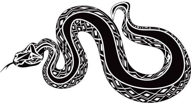 Giant snake vector tattoo vector art illustration