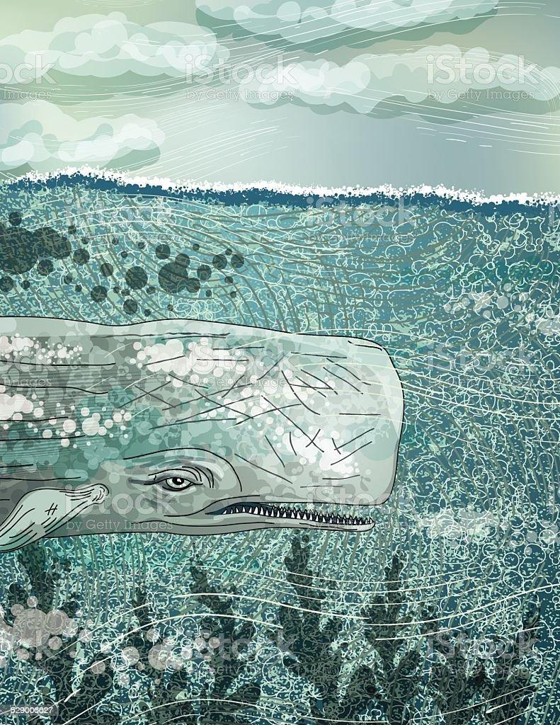 Baleine géant nager dans l'océan - Illustration vectorielle