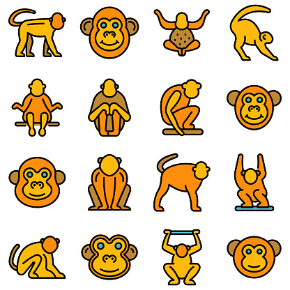 Gibbon icons set vector flat