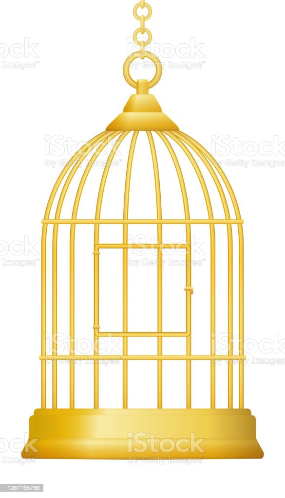 Gilded cage. Symbol for being trapped in luxury and wealth, but without freedom. Isolated vector illustration on white background. vector art illustration