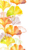 Gingko Leaf Ink Border and Watercolor Seamless Pattern - Vector Illustration