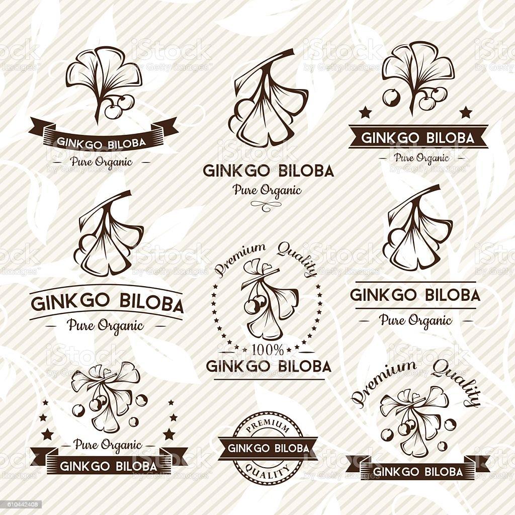 Ginkgo biloba. Badges and labels, emblems collection. vector art illustration