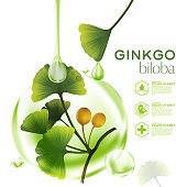 cosmetic illustration with ginkgo biloba, green leaves. Skincare, moisturizing cream in tube, natural cosmetics.