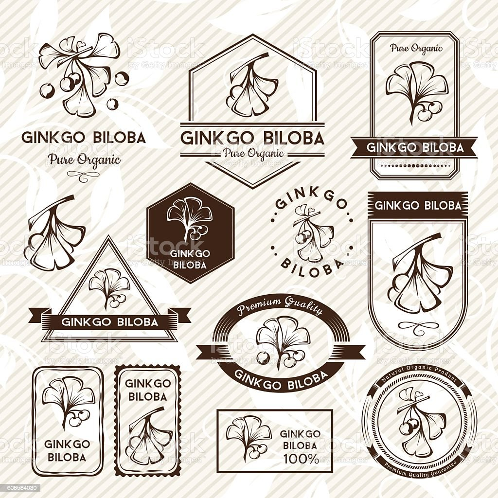 Ginkgo biloba. Labels and stickers collection. vector art illustration