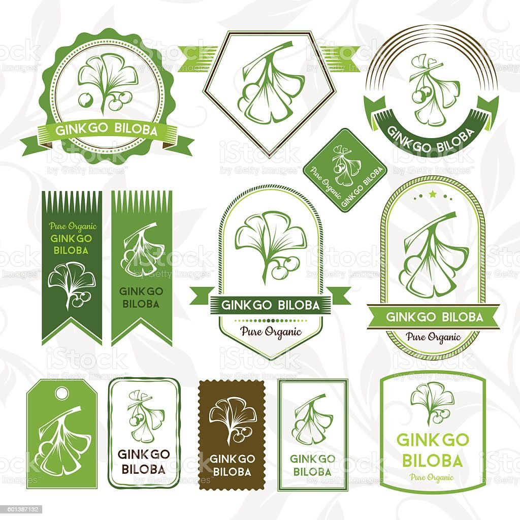 Ginkgo biloba. Labels, stickers and badges collection. vector art illustration