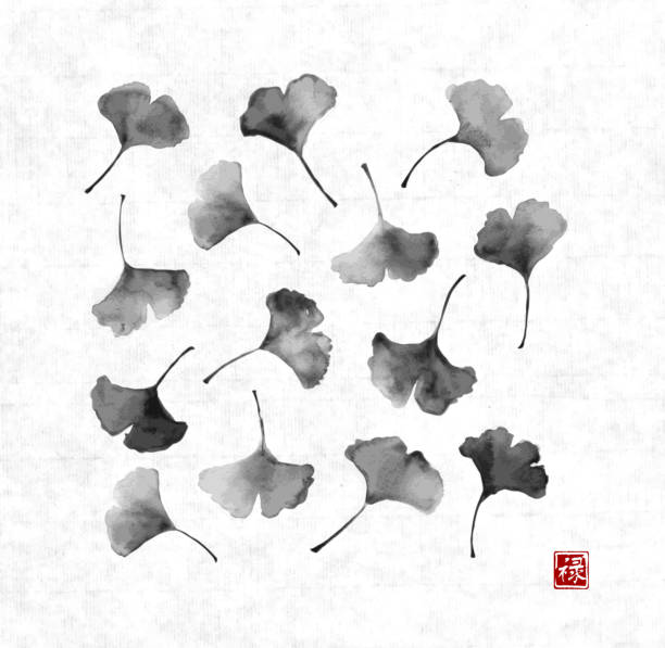 Ginkgo biloba leaves on vintage rice paper background Ginkgo biloba leaves on vintage rice paper background. Traditional Japanese ink painting sumi-e. Contains hieroglyph - well-being. ginkgo stock illustrations