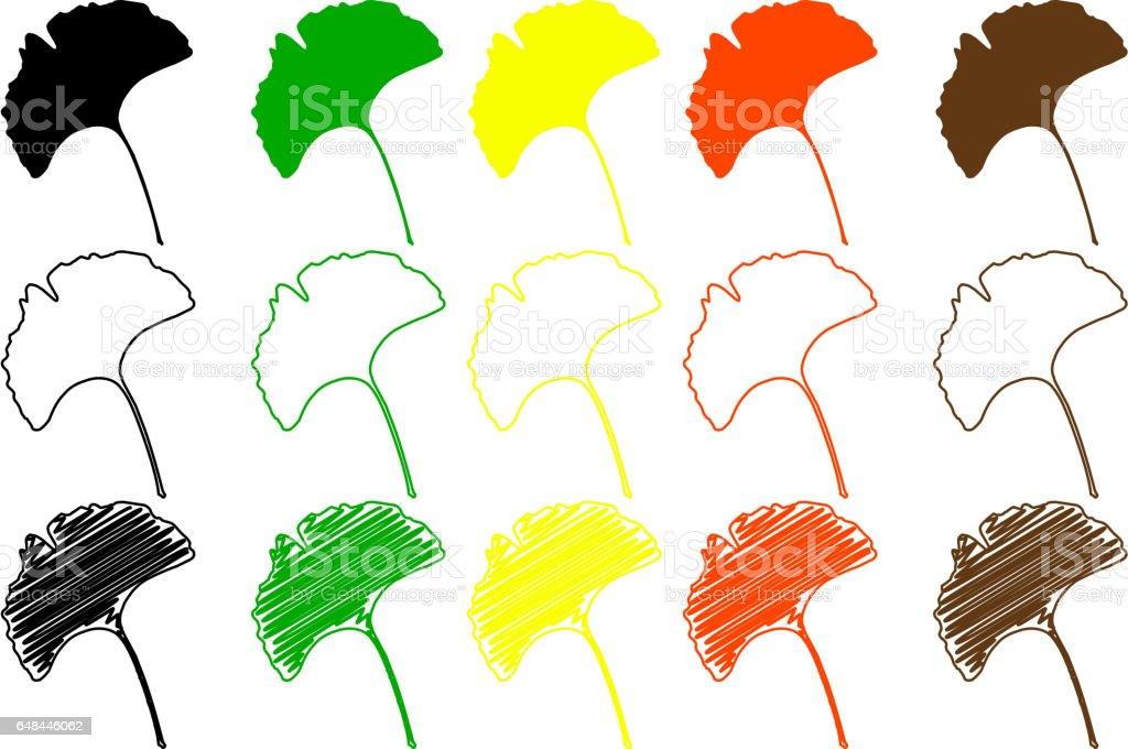 ginkgo leaf color set vector art illustration