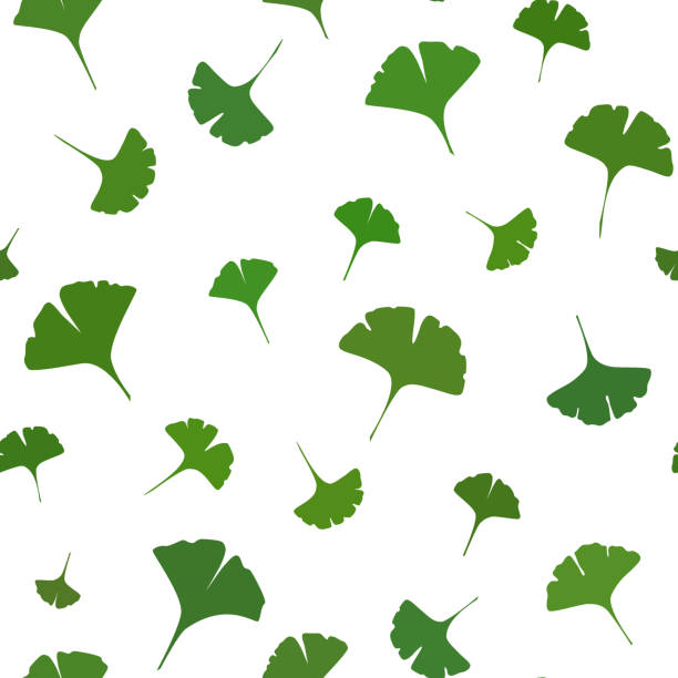 Ginkgo leaves Seamless Pattern on white background. Vector Ginkgo leaves Seamless Pattern on white background. Vector illustration ginkgo stock illustrations